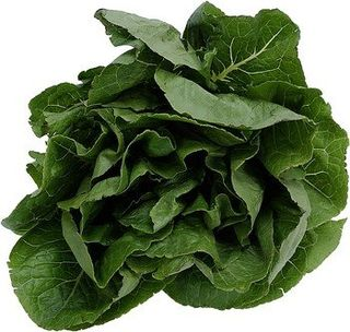 SpinachHead