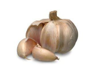 Garlic_bulb