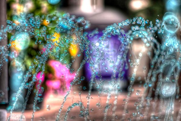 image from barbhogan.smugmug.com